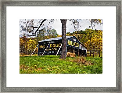 Chew Mail Pouch Painted Framed Print