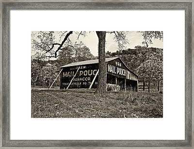 Chew Mail Pouch Sepia Framed Print