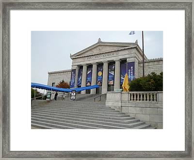 Chicago Aquarium Framed Print