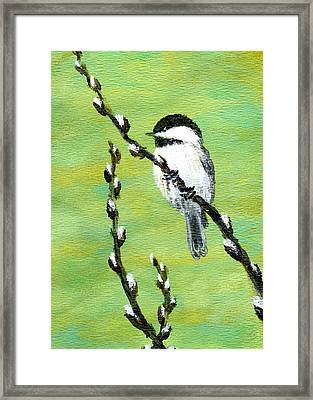 Framed Print featuring the painting Chickadee On Pussy Willow - Bird 2 by Kathleen McDermott