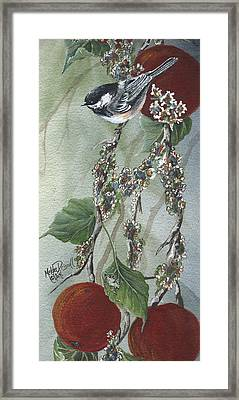 Chickadee Too Framed Print by Meldra Driscoll