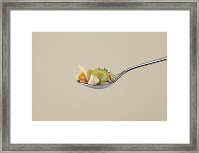 Chicken Noodle Soup Framed Print by James And James