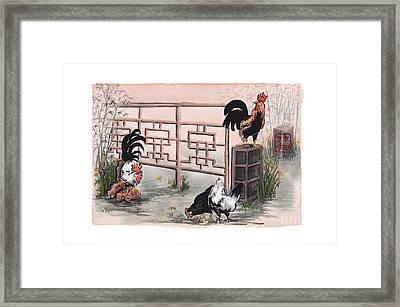 Chickens At The Gate Framed Print by Nancy Pahl