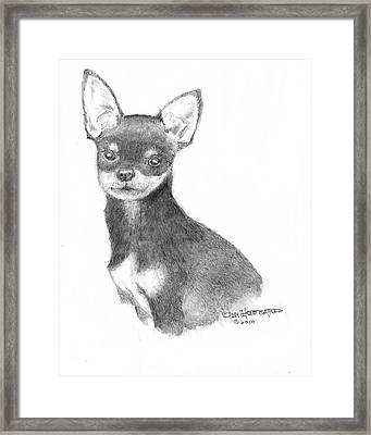 Framed Print featuring the drawing Chihuahua by Jim Hubbard