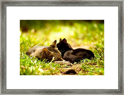Child And Mother Framed Print