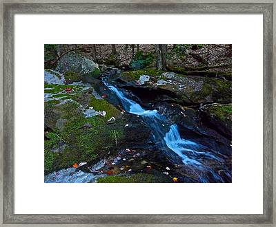 Childs Brook Summer 13 Framed Print by George Ramos