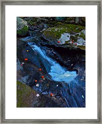 Childs Brook Summer 15 Framed Print by George Ramos