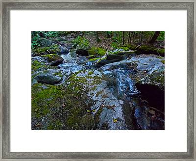 Childs Brook Summer 18 Framed Print by George Ramos