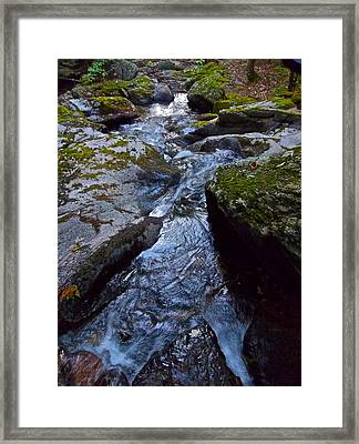 Childs Brook Summer 21 Framed Print by George Ramos