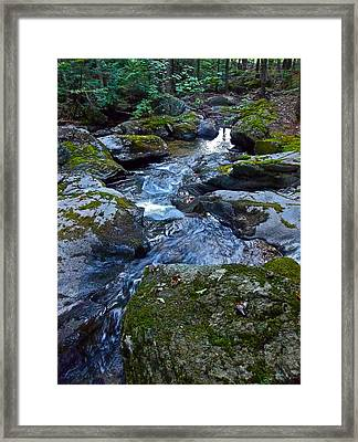 Childs Brook Summer 23 Framed Print by George Ramos