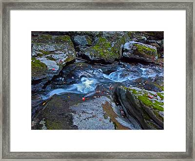 Childs Brook Summer 24 Framed Print by George Ramos