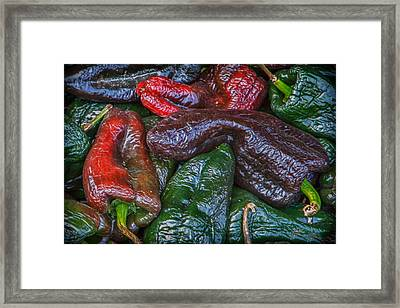 Chile Ancho Framed Print