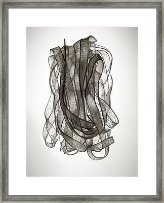 Chinese Noodle Framed Print by Jonathan Kantor