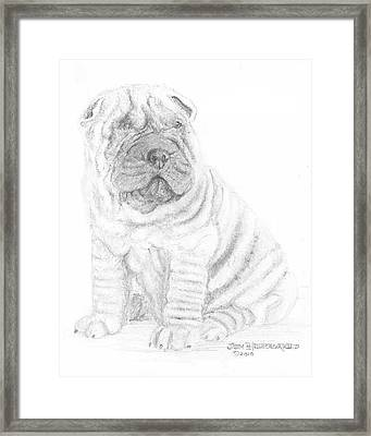 Framed Print featuring the drawing Chinese Shar-pei by Jim Hubbard