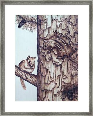 Chippy Love Framed Print by Susan Rice