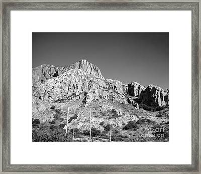 Chisos Mountain Detail Framed Print