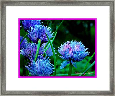 Chives For You Framed Print