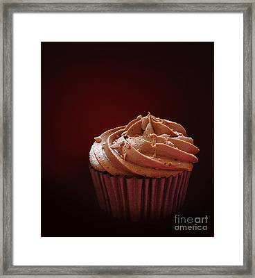 Chocolate Cupcake Isolated Framed Print by Jane Rix