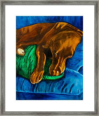 Chocolate Lab On Couch Framed Print by Roger Wedegis