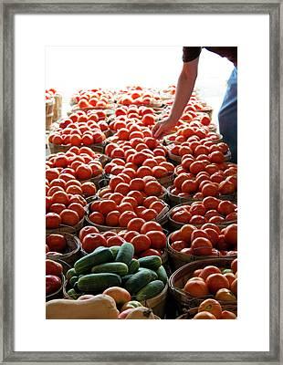 Choices Framed Print by Kristin Elmquist