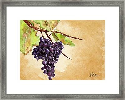 Chris' Grapes Framed Print