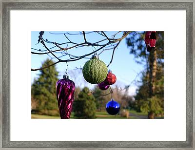 Christmas Baubles Framed Print by Richard Reeve