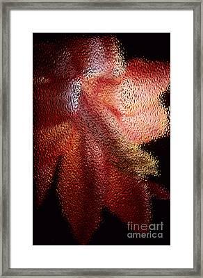 Christmas Cactus Framed Print by Sharon Elliott