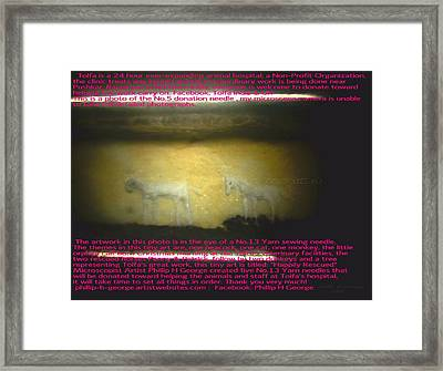 Christmas Calf And Penny Framed Print