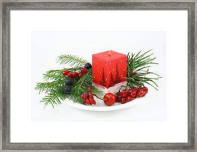 Framed Print featuring the photograph Christmas Composition With Wood Berries by Aleksandr Volkov