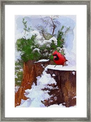 Christmas Guest Framed Print by Ron Jones
