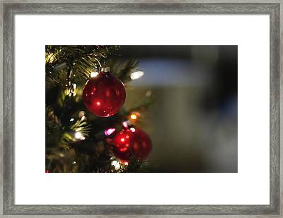 Christmas In The Sanctuary Framed Print