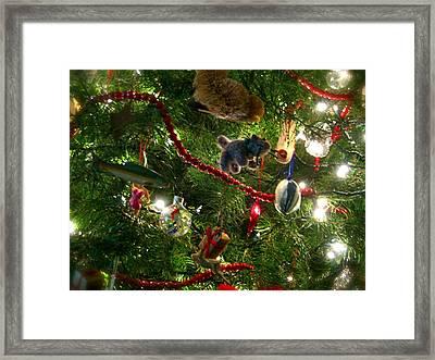 Christmas Framed Print by Jon Berry OsoPorto