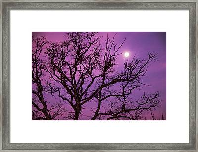 Christmas Morning Moon Framed Print by Jeff R Clow