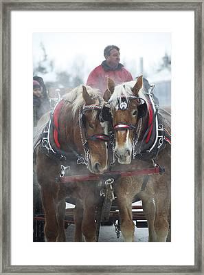 Christmas Sleigh Ride Framed Print by Elaine Mikkelstrup