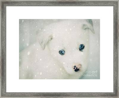 Christmas Snow Framed Print by Billie-Jo Miller