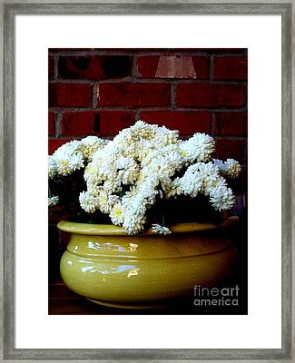 Chrysanthemums In A Yellow Pot Framed Print