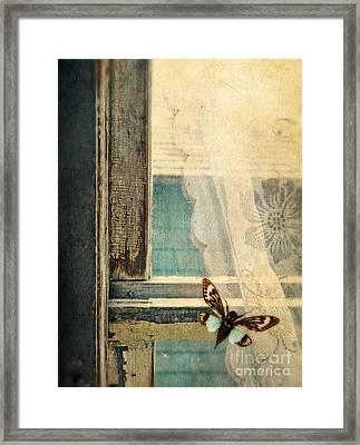 Cicada On Window Framed Print by Jill Battaglia