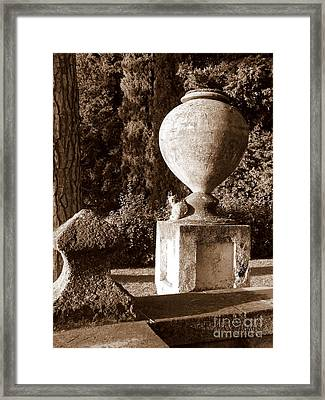 Cimbrone Cat Framed Print