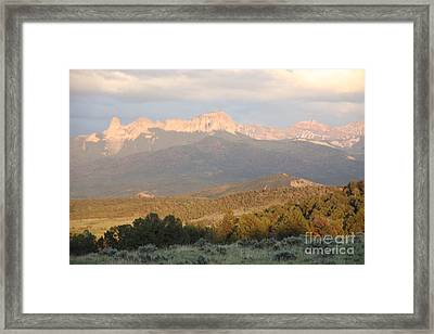 Framed Print featuring the photograph Cimmarons At Sunset by Marta Alfred