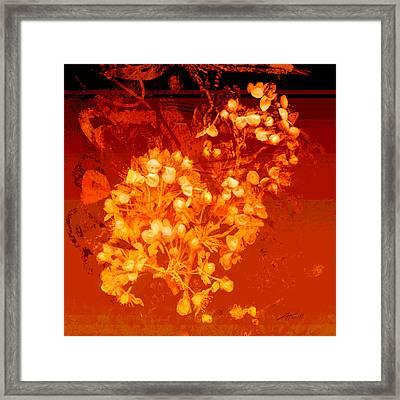 Cinnabar  Framed Print by Ann Powell