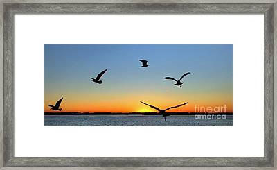 Circle Meeting At Sunrise Framed Print by Benanne Stiens