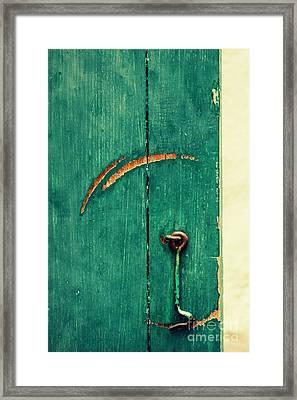 Circle Of Life Framed Print by Vishakha Bhagat
