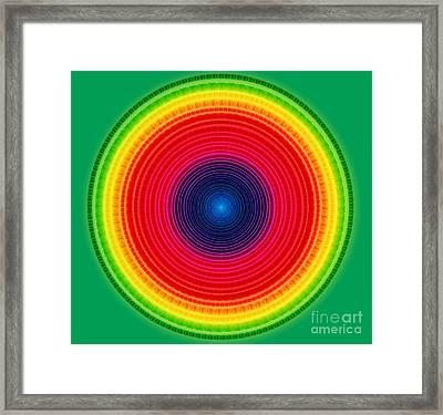 Circle X-ray Framed Print