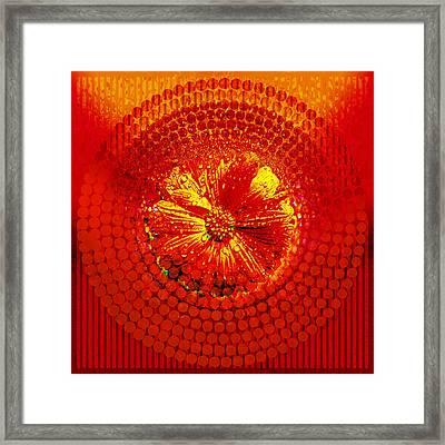 Circle1975-02 Framed Print