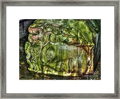 Cistern Medusa Framed Print by Michael Garyet