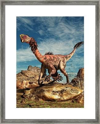 Citipati In The Desert Framed Print by Daniel Eskridge