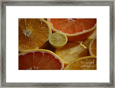 Citrus II Framed Print by Robert Meanor
