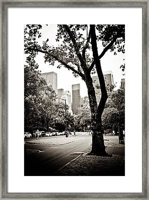 City Contrast Framed Print by Sara Frank