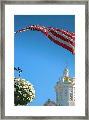 City Hall Dome And Flag Framed Print