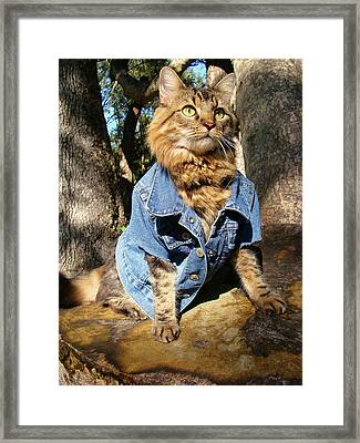 Classic Denim Framed Print by Joann Biondi